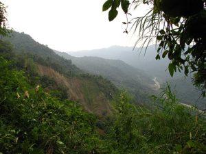 namdapha forest